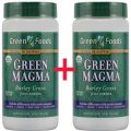 Green Magma - Powdered Barley Grass Juice 1+1 (150g+150g) 10.6 oz - Green Foods