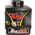 Kosher Revolution Mass Gainer Vanilla Flavor 8 kg (17.6 LB) - PowerTech Nutrition