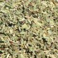 Dried Sage 50g - Herba Center