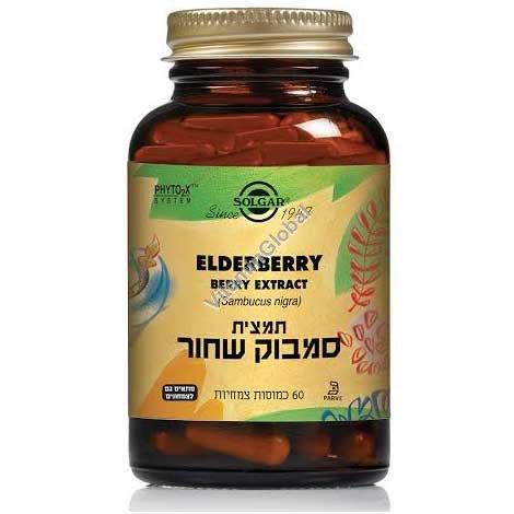 Elderberry Extract (SFP) 60 capsules - Solgar