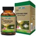 Kosher L'Mehadrin Spirulina Algae 600 mg 60 caps - SupHerb