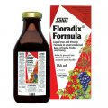 Floradix Liquid Iron Formula 250 ml - Salus