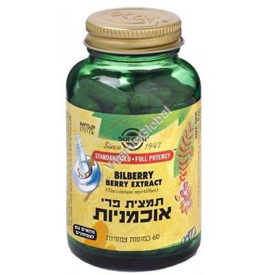 Bilberry Berry Extract (SFP) 60 caps - Solgar