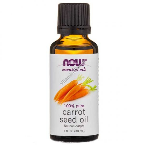 Carrot Seed Essential Oil 30ml (1 fl oz) - Now Essential Oils