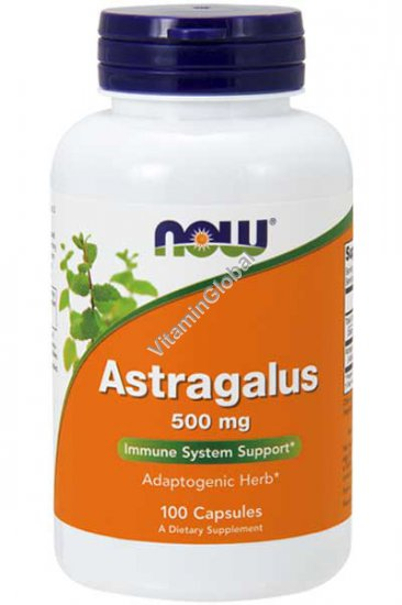 Astragalus Immune System Support 500mg 100 capsules - Now Foods