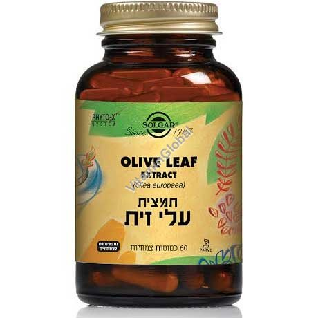 Olive Leaf Extract (SFP) 60 capsules - Solgar