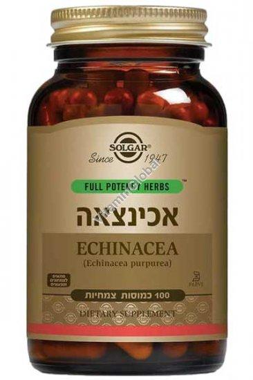 Full Potency Echinacea purpurea 100 Vegetable Capsules - Solgar