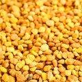 Kosher L'Mehadrin Bee Pollen 250g - Herba Center