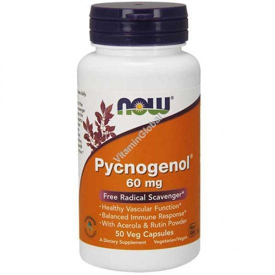 Pycnogenol 60 mg 50 Veg Capsules - NOW Foods