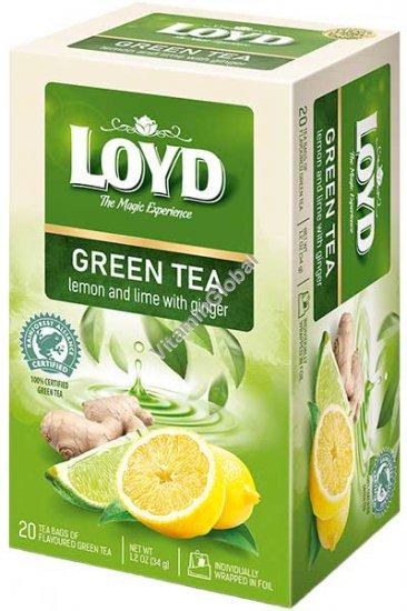Green Tea with Lemon, Lime and Ginger 20 tea bags - Loyd