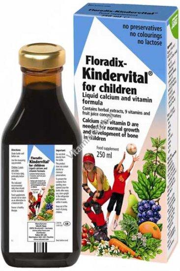Multivitamin Floradix Kindervital for Children 250 ml - Salus