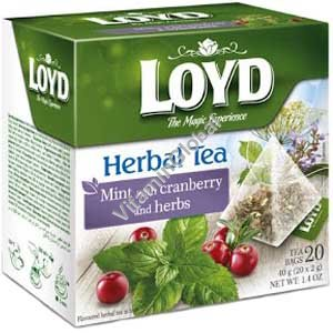 Mint with Cranderry and Herbs 20 pyramid tea bags - Loyd
