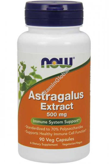 Astragalus Extract Immune System Support 500mg 90 Veg Capsules - Now Foods