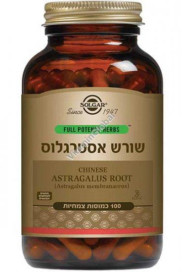 Full Potency Astragalus Root 100 Vegetable Capsules - Solgar