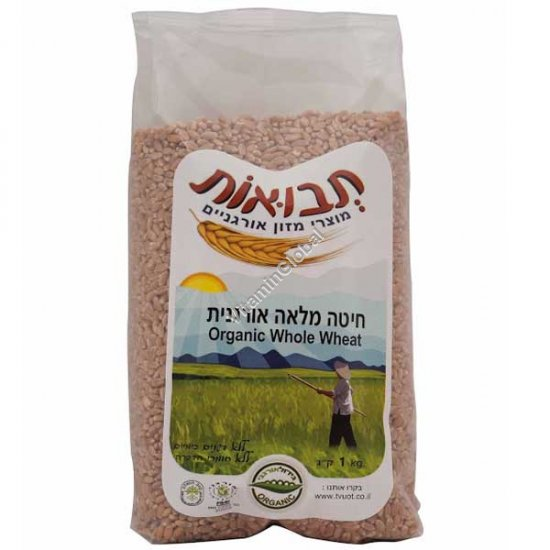 Organic Whole Wheat 1kg - Tvuot