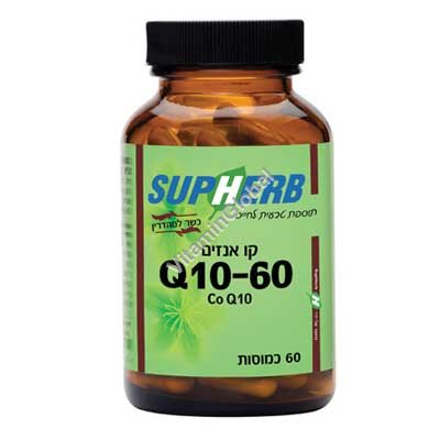 Kosher L\'Mehadrin Co Q10 60 mg 60 caps - SupHerb