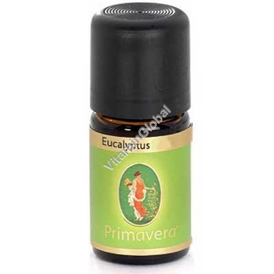 Eucalyptus oil 10 ml - Primavera