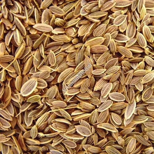 Dill Seeds 100g - Herba Center
