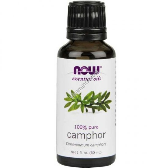 Camphor Essential Oil 30ml (1 fl oz) - Now Essential Oils